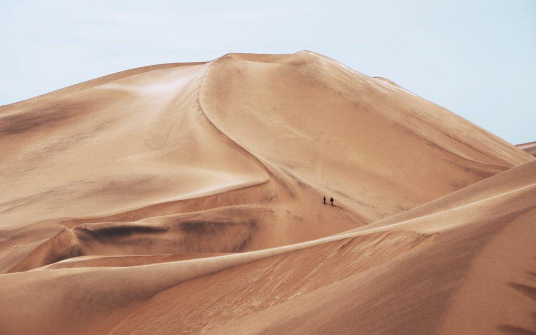 Afrika in Corona-Zeiten. Feststellungen und Thesen